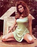 Raquel Welch Well I'm gonna stop there since I noticed Fapo is really screwing up my PIC's. I'll try redoing the rest a Imagevenue. And post them as soon as I can. Foto 228 (Рэкел Уэлч Ну, я буду останавливаться на этом, так как я заметил Fapo действительно прищурив моя Работа.  Фото 228)